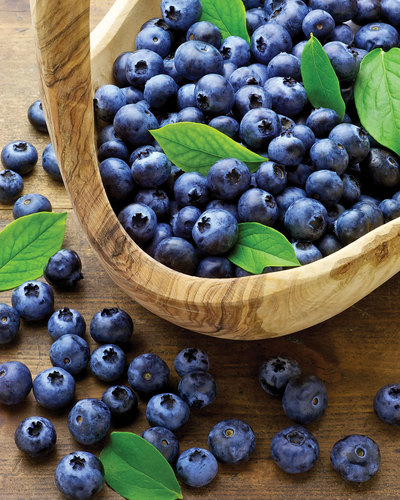 The What, Why and Where of Antioxidants