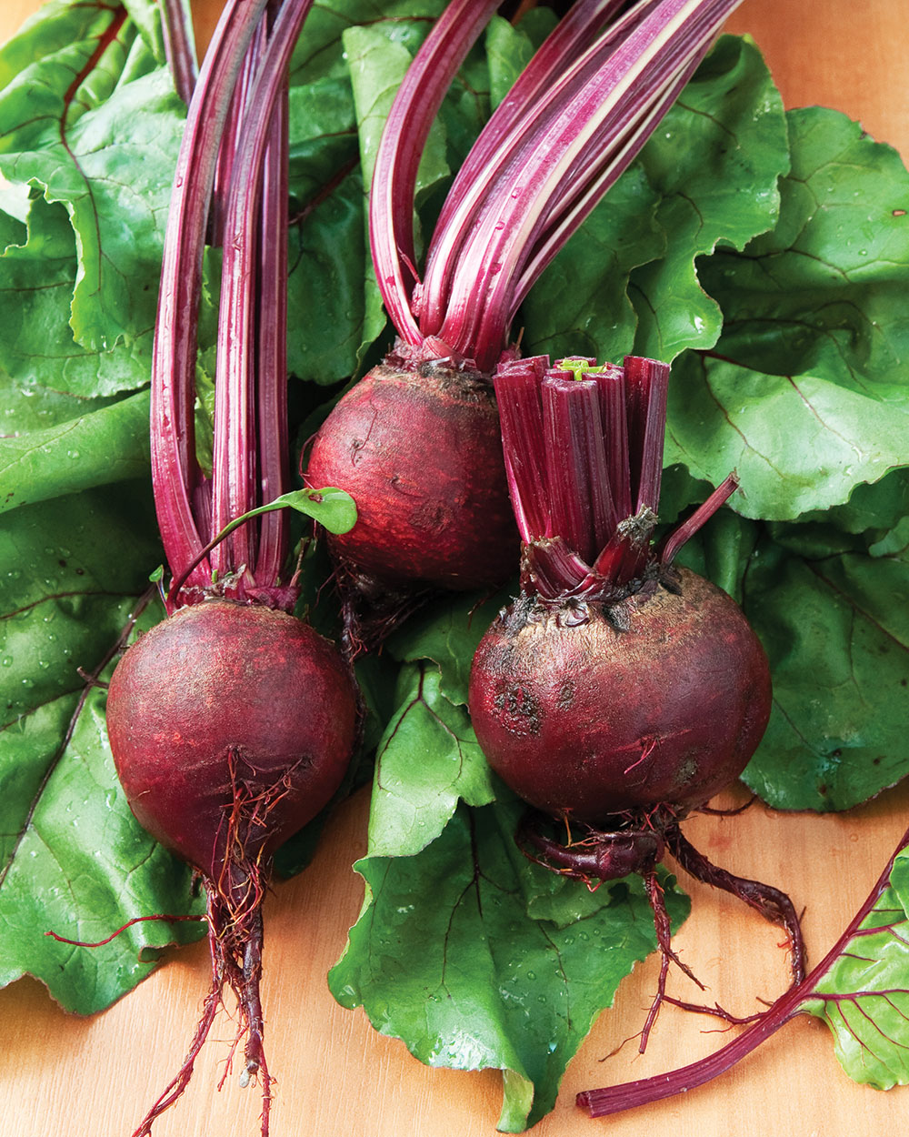 Getting to the Root of Root Vegetables