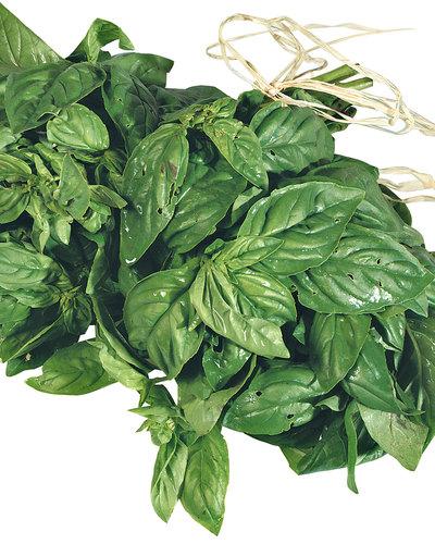 Fresh Herbs: Basil