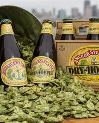Anchor Steam Dry-Hopped
