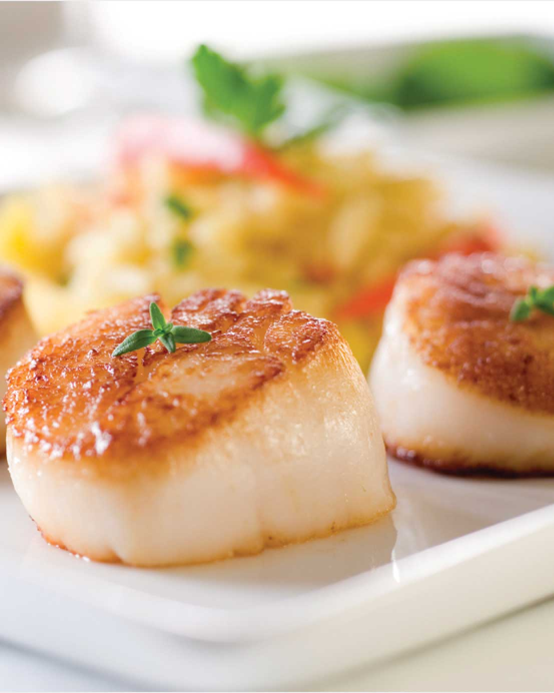 Seared Scallops with Orzo Cooked in Wine