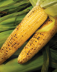 Cajun-Flavored Grilled Corn on the Cob